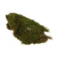 mos naturel 1.5 kilo