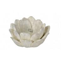 bloem cement 24 cm doorsnee crème
