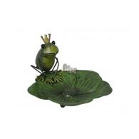 vogelbad metaal kikker op blad groen