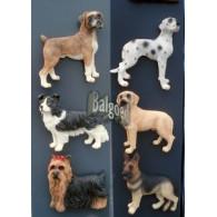 magneet honden 6 assortiment design