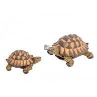 schildpad polystone lang 23 cm