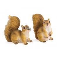eekhoorn  polystone hoog 9 cm 2 assortiment design
