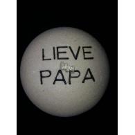 steen winterhard met tekst: Lieve papa