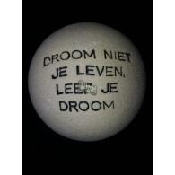 steen winterhard met tekst: Droom niet je leven, leef je droom