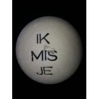 steen winterhard met tekst: Ik mis je