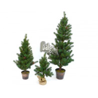 kerstboom kunst 80 cm met pot