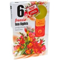 theelicht geur 18x40 box a 6 pc freezia