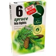 theelicht geur 18x40 box a 6 pc spruce
