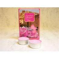 theelicht geur 18x40 box a 6 pc geranium marocco