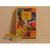 theelicht geur 18x40 box a 6 pc tropical fruit