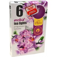 theelicht geur 18x40 box a 6 pc orchidee
