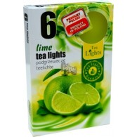 theelicht geur 18x40 box a 6 pc lime